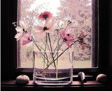 客厅花瓶摆放哪里风水好