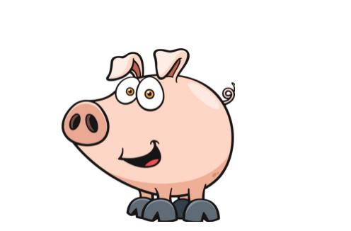 2007年属猪的人2020年运势及运程