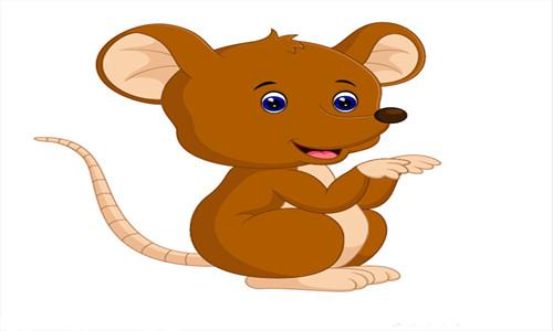 2020年属鼠的出生时间与命运测算,几月份命格最好