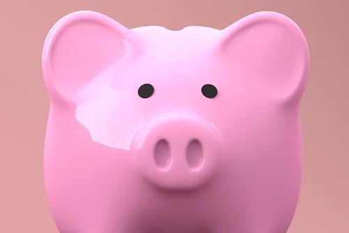 金命属猪的什么月份出生好命,三月、六月、十月