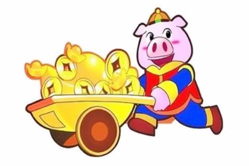 属猪的今年多大2021(2019、2007、1995、1983、1971)