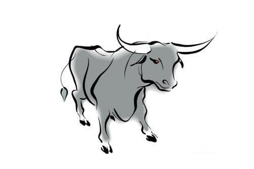 2009年属牛人今年多少岁2021年