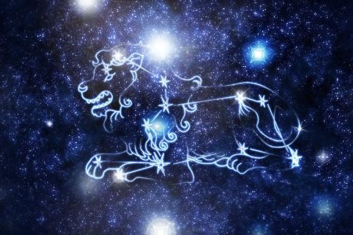 狮子座属什么生肖最聪明,属猪、属鼠、属兔