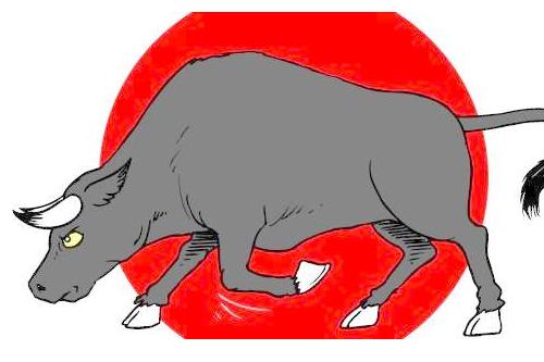 属牛本命年忌什么生肖,生肖羊、龙、马、狗